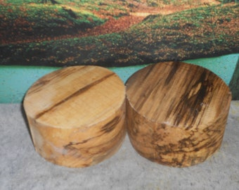 Spalted Hackberry, 6 X 3  Turning wood bowl, small project blanks     #58531
