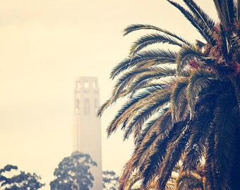 Coit Tower - 8x10 photograph - Vintage San Francisco - fine art print - palm tree - California photograph - San Francisco
