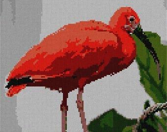 Needlepoint Kit or Canvas: Scarlet Ibis