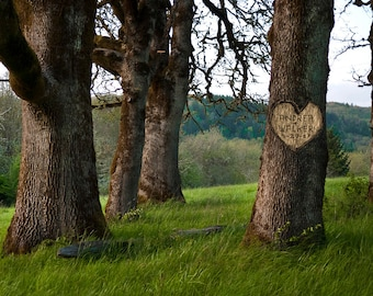 Carved Heart on Tree Personalized Wedding Gift Unique Romantic Anniversary Gift Customized Names Photo Outdoors pp167