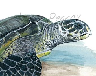 Hawksbill Turtle greeting card Australian wildlife art, painting, sea green grey blue