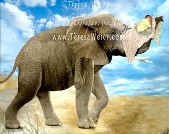 Elephant and Baby Digital Background, Digital photo Manipulation, Personalized Artwork, Custom Artwork, Portrait Composition, Photo Edit