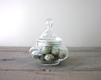 Glass Apothecary Jar