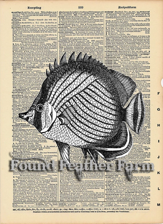 """Vintage Antique Dictionary Page with Antique Print """"Black and White Angel Fish"""""""