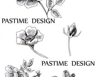 Hand Drawn Rose clip art, rose digital stamps, garden clip art, garden digi stamp,instant download,scrapbooking,cardmaking,hand drawn stamp