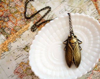 giant cicada necklace- insect jewelry- natural history- aged brass