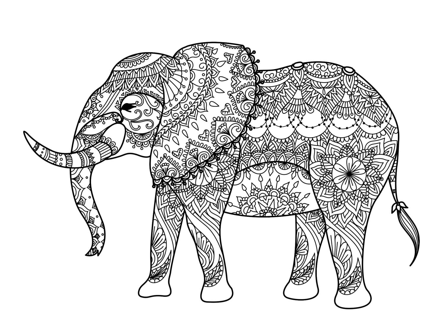 Free zentangle elephant coloring pages ~ Elephant Zentangle digital colouring sheet