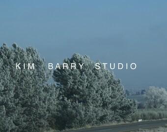 Landscape Winter Trees Photography Print multi sizes Blue White Wall Art Home Decor