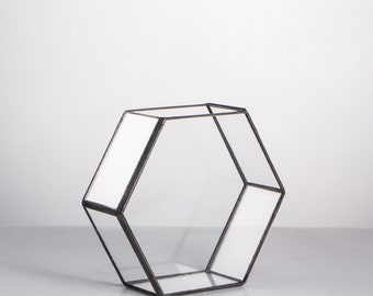 Glass Hexagon Geometric Terrarium Indoor Planter for Succulents Tabletop Flower Plant Holder Bonsai Pot Decorative