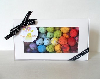 Rainbow Seed Bomb Gift Box - Unique Hostess Gift, Gardening Gift, Stocking Stuffer