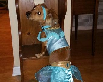 Princess Jasmine Dog Costume