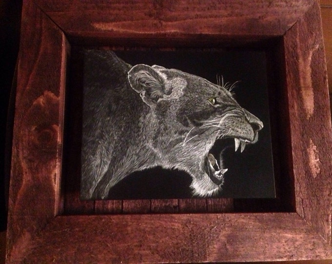 Roar!!! 8x10 inch scratchboard in a handmade rustic frame. One of a kind!