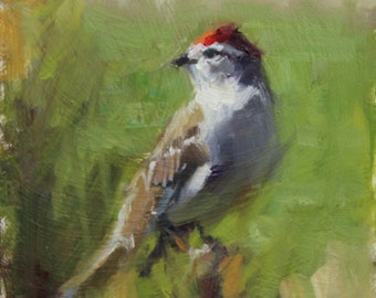 "Small original oil painting of a redpoll (6'x6"")"