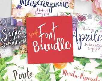 Script font bundle