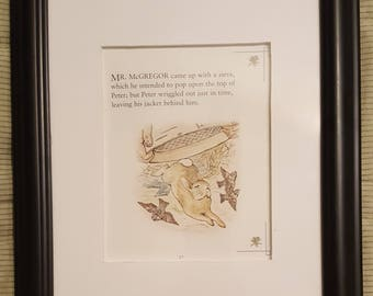 Peter Starts His Escape - The Tale of Peter Rabbit - Beatrix Potter - Aproximaitely 5 1/2 x 7 1/2 inches