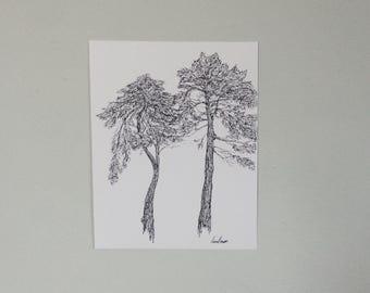 Unique Pines Print (ink pen, woodland, botanical sketch)