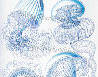 Vintage Blue Jellyfishes Downloadable Image Art