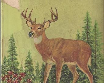 Vintage Mammals A Golden Nature Guide Book, C1955