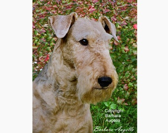 Airedale Terrier Flag, Airedale Terrier Gift, Airedale Terrier Art, Airedale Terrier