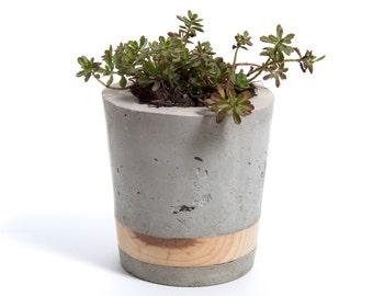 Large Concrete Planter - Pine Band