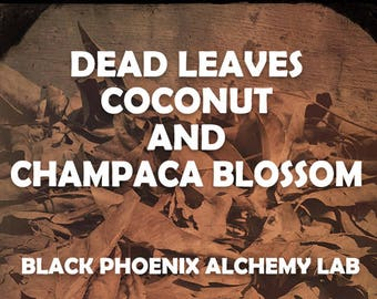 Dead Leaves, Coconut, and Champaca Blossom