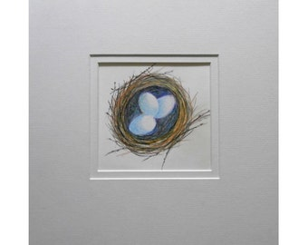 Original painting. Nest painting. Small coloured pencil painting. Nature painting. Wildlife painting.