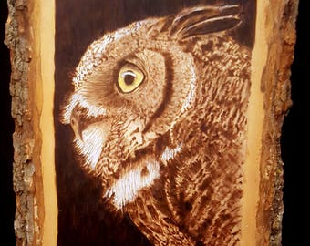 Wood Burning of a Great Horned Owl