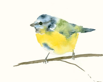 Bird Watercolor Print Blue Tit