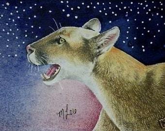 ACEO Print Tiny Art Wildlife Melody Lea Lamb Mountain Lion
