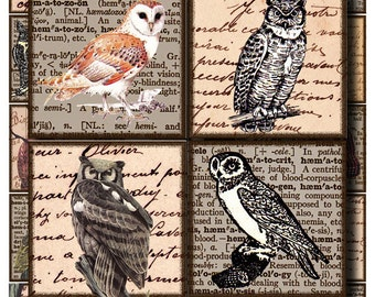 wise old owls, on antique writing, a 2 x 2 inch digital collage sheet no. 145