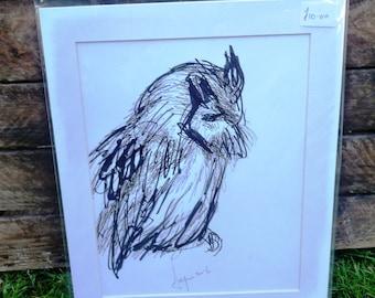 Scops Owl Original Drawing