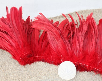 Rooster coque feathers 8-10 inch length color red- dyed over natural bleached, Tahitian costume supply