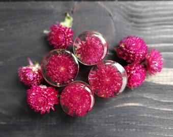 Real pressed flower plug earrings alternative wedding plugs and tunnels resin ear gauges girlfriend gift purple gomphrena terrarium jewelry