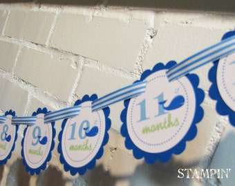 READY to SHIP Wittle Whale Collection: Just Born/0-12 Mos First Birthday Photo Picture Banner for hanging pictures. Under the Sea. Beach.