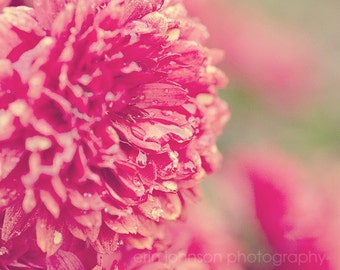 flower photography rain drops red home decor red wall art fine art nature photograph Red Chrysanthemums