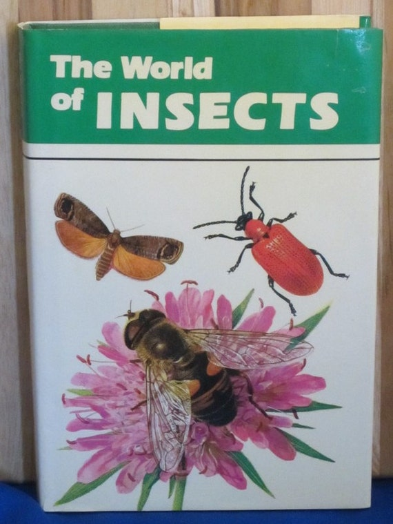 The World of Insects + Adriano Zanetti + 1979 + Vintage Kids Book
