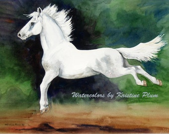 Horse Notecard Lipizzaner horse watercolor Painting Leaping Lipizzan by Kristine Plum stationary