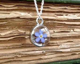 Real forget me not flower pendant on a sterling silver chain. Nature's Reliquaries Collection