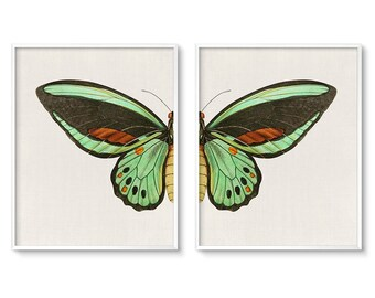 Modern Bohemian Decor Wall Art Set Of 2 Butterfly Wings