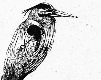 Nature Note Cards - 5 Pack - Heron - Pen and Ink - Cream-colored Recycled Paper with White Envelopes - Tied with Raffia - Christmas Gift