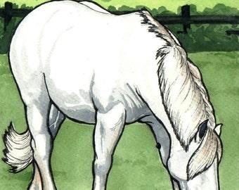 Percheron Draft Horse Grazing HORSE ART