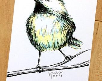 Original Pen &  Ink Illustration - Chickadee No. 1