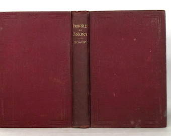 1892 'Principles of Zoology – A Guide for Beginners'  by Richard C Schiedt