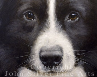 Aceo Dog Print, Border Collie. From an Original Painting by Award Winning Artist JOHN SILVER. Personally signed. BC014AC