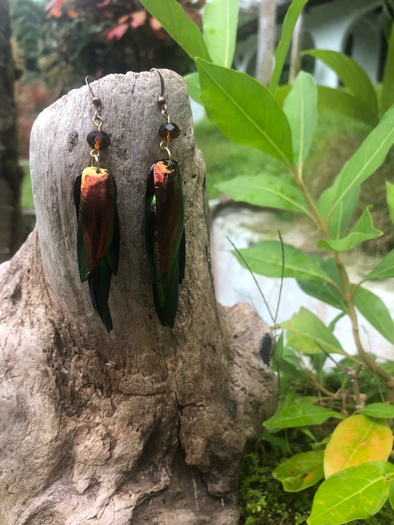 Ready to ship - Iridescent Red, Orange & Green Elytra Jewel Beetle Wing Earrings