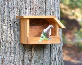 Mourning Dove - Cedar bird house