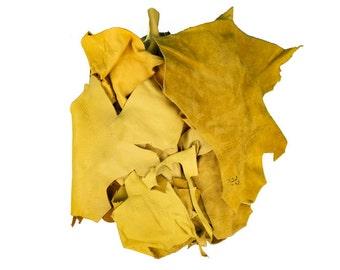 2 pounds of Elk Leather Scraps Remnants Pieces 2 lb (421-LB-CRSM)