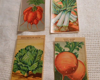 4 SEED PACKET LABELS Veggies Carrots Leeks Cabbage Beets, 1920s French Garden Litho Paper Art, Vibrant Colors Cards Collage, Gardener