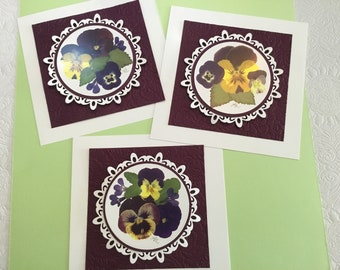 Pansy Artwork, Set of Three Pansy Prints Matted and Ready for Framing, White Die Cut Circular Mat on top of Backberry Embossed Mat