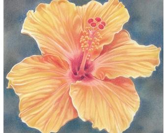 """Flower Greetings Card - """"Orange Hibiscus"""""""